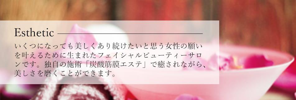 新潟県の直営スキンイノベーションサロン|エステサロンコンサル|スクール開講|化粧品販売|マリープラチーヌ株式会社
